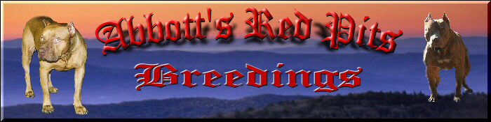 Abbott's Red Pits breedings page